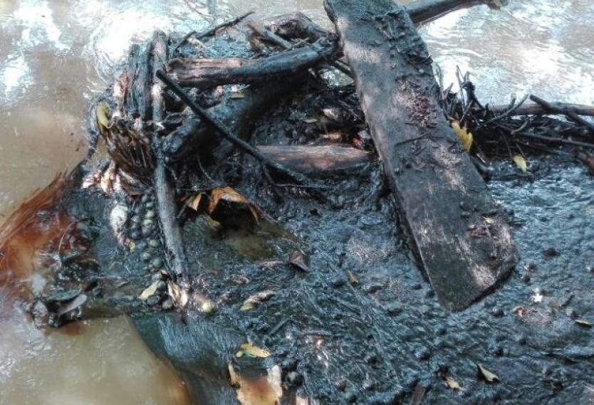 Director ambiental de la ONU propone un comité evaluador para el pozo de Lisama