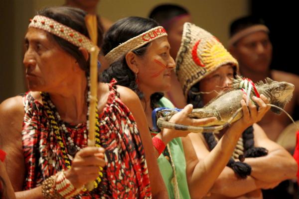 Venezuela escogerá la representación indígena a consejos legislativos