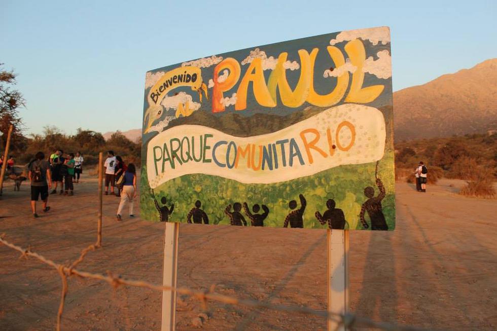 Ciudadanía y Universidad Diego Portales llegan al Tribunal Ambiental para proteger el bosque El Panul