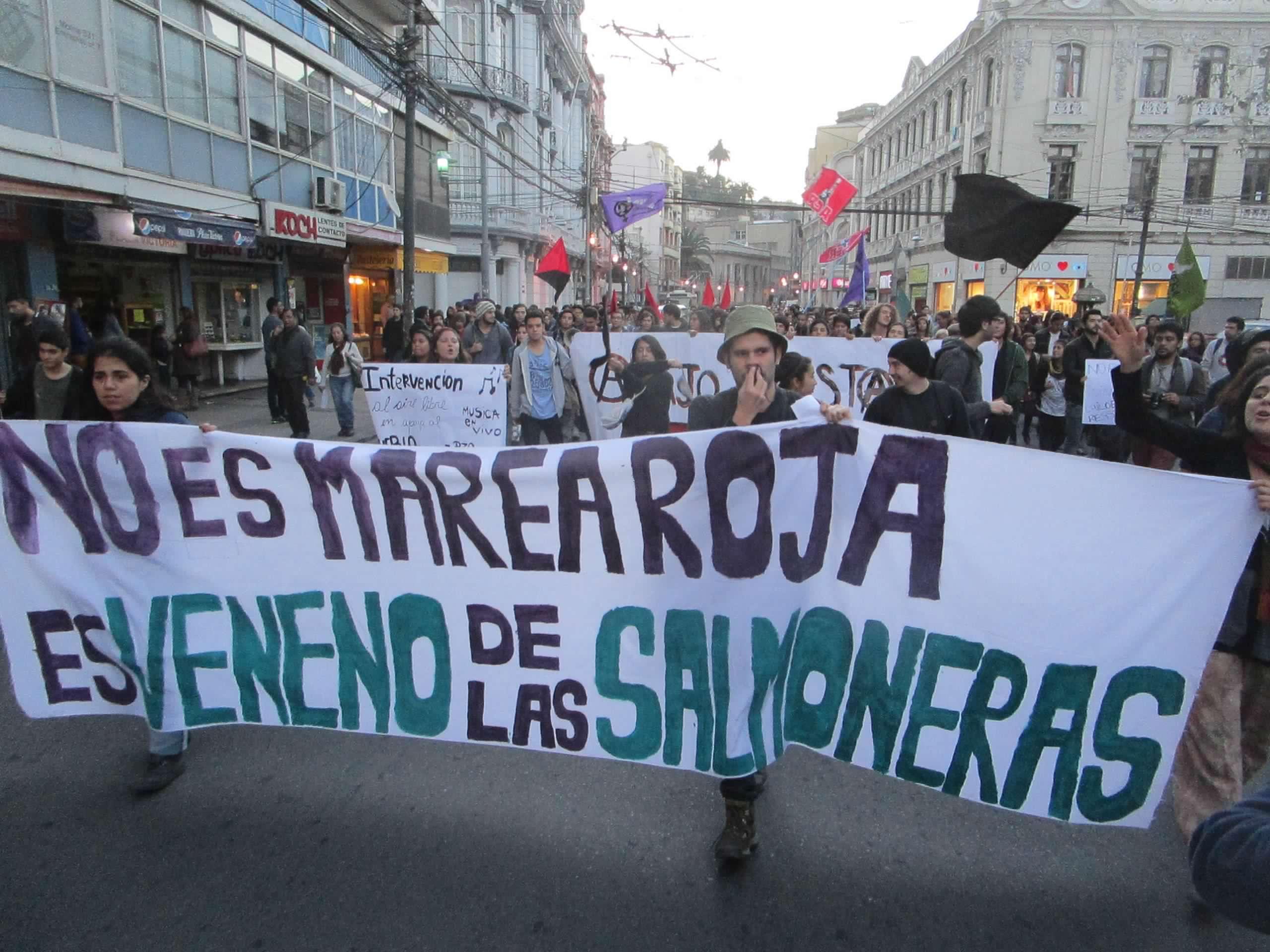 Trabajadores del mar de Chiloé piden el cese de las concesiones acuícolas salmoneras en todo Chile