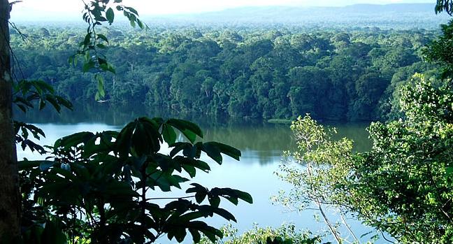 Científicos confirman que la mayor biodiversidad del mundo se encuentra en Bolivia