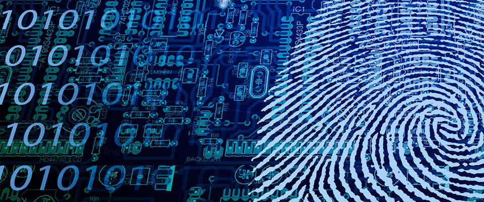 Parlamento vietnamita legaliza la ciberseguridad