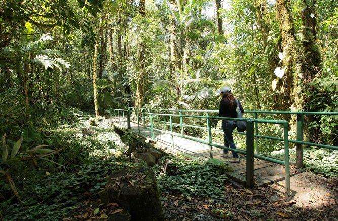 Acusan a expresidente de Costa Rica por malversar fondos ambientales