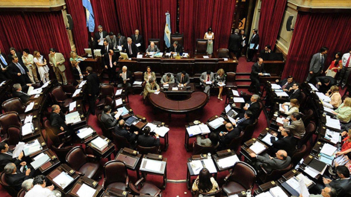 Bloque kirchnerista en el Senado respaldará la ley proaborto
