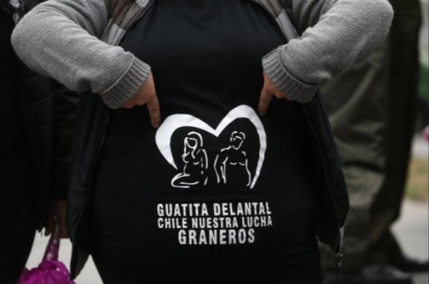 Movimiento Guatita de Delantal pide a Santelices inclusión de abdominoplastía y cirugía bariátrica en el Auge