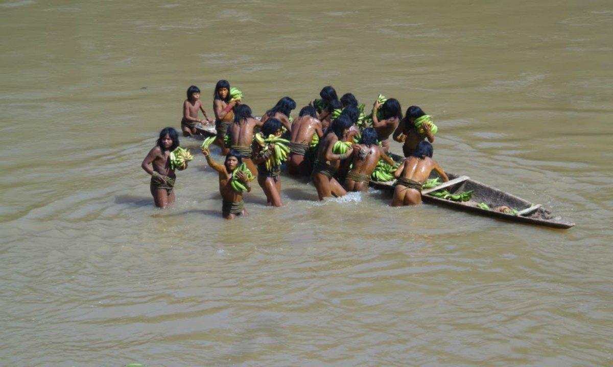 Colombia reconoce derechos de los pueblos indígenas en aislamiento (+VIDEO)