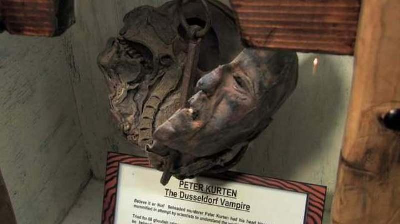 """Se exhibe en Estados Unidos la cabeza momificada del """"Vampiro de Düsseldorf"""""""