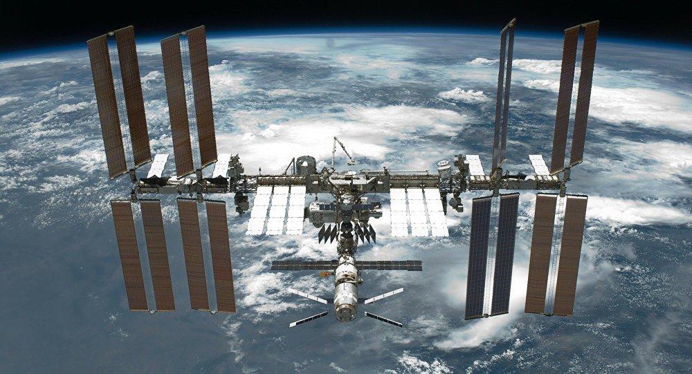 (Video) Activan el Proyecto Icarus para observar animales desde el espacio
