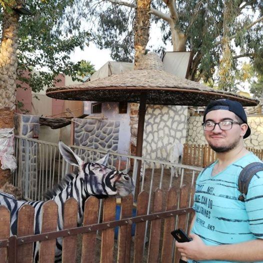 Por pintar una burra como cebra fue cerrado zoológico en Egipto