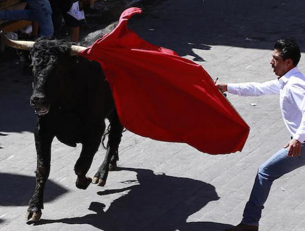 Corte Constitucional de Colombia legalizó las tauromaquias