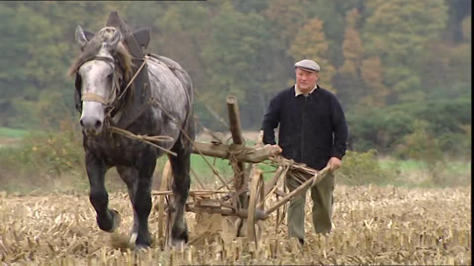 """Campesinos franceses protestan contra inversionistas chinos que """"acaparan"""" las tierras"""