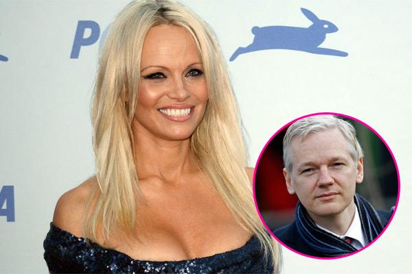 """Pamela Anderson confiesa su """"conexión romántica"""" con Julian Assange"""