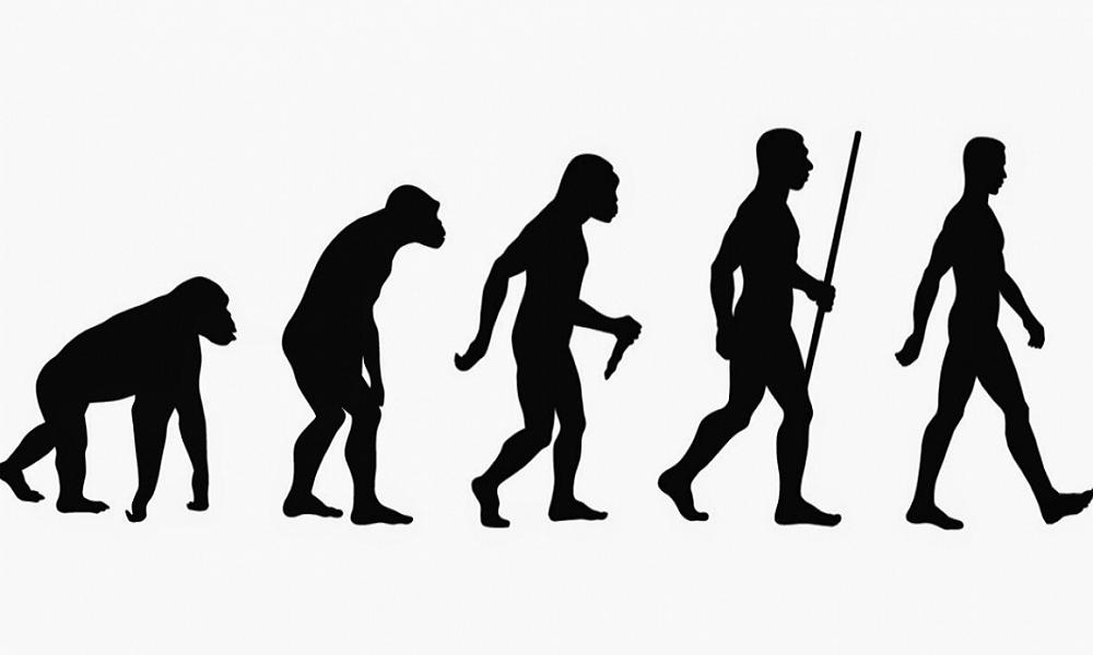 """""""La comunicación forma de desarrollo de la especie humana"""" mito cuestionado por científicos"""