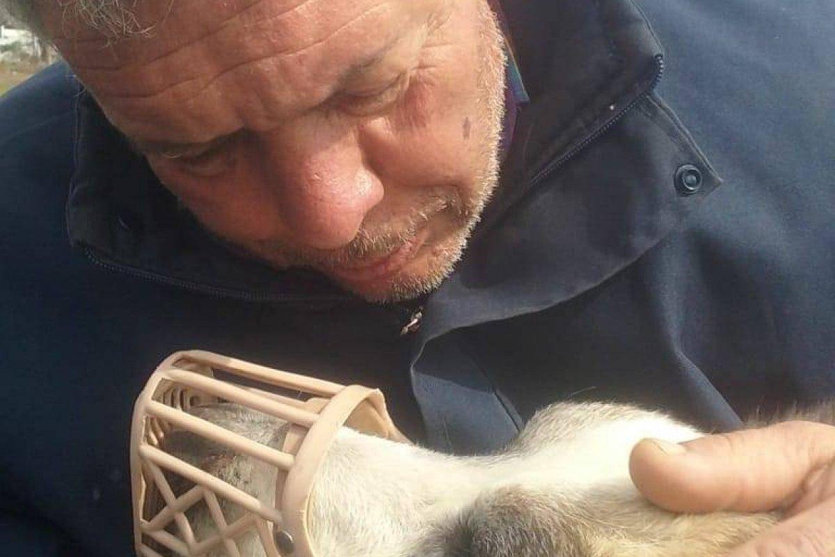 Sufre ataque cardíaco al ver un  video en el que maltrataban brutalmente a su perro