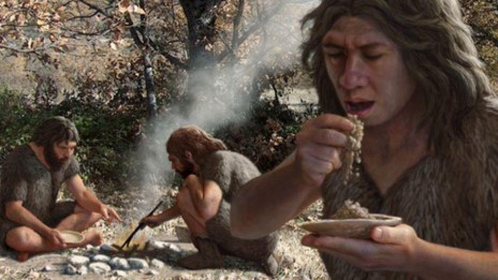 Hace 8.000 años el hombre cambió su dieta para adaptarse al cambio climático