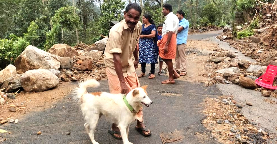 (Video) ¡Superperro! Salvó a una familia de las inundaciones en la India