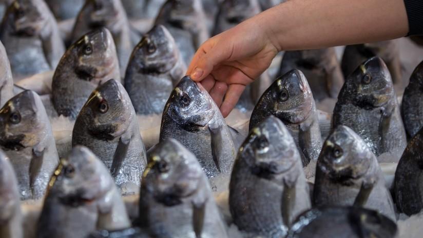 Pegaban ojos falsos a pescados y los vendían como frescos