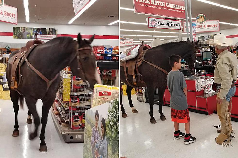 (Vídeo) Entró con su caballo: El lejano oeste llegó a una tienda de mascotas en Oklahoma