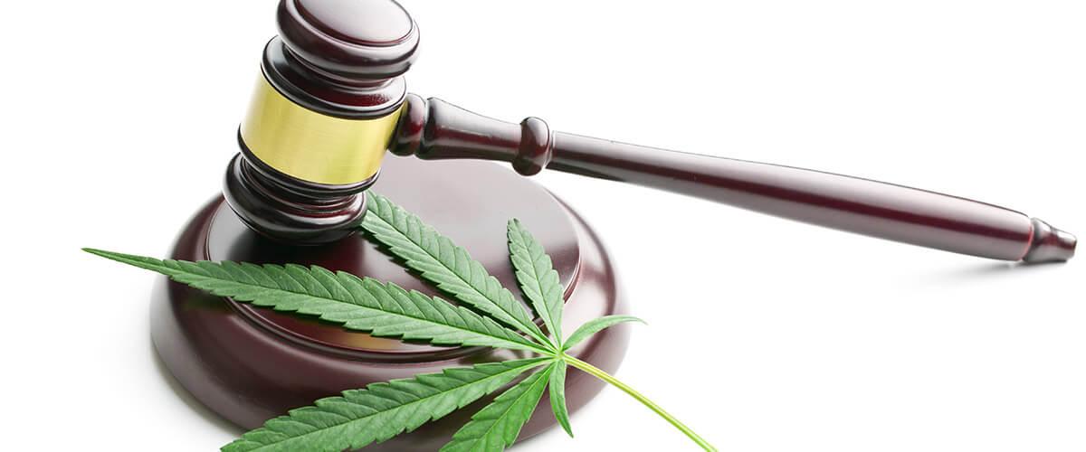 Conoce porque realmente prohibieron la Marihuana