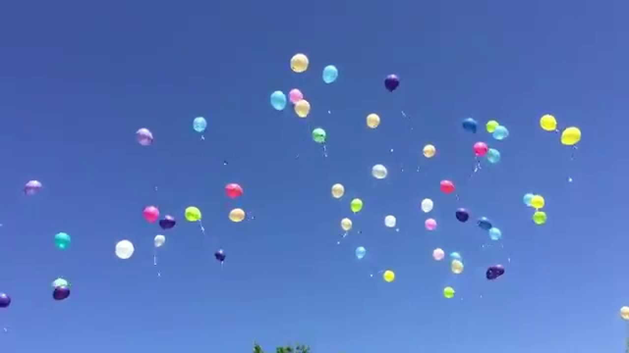 (Video) Los globos de helio son armas letales para el reino animal