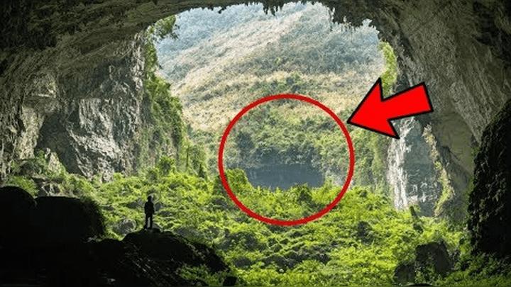 (Vídeo) Criaturas extrañas y gigantes yacen en la Amazonía, afirman los indígenas mucuxies