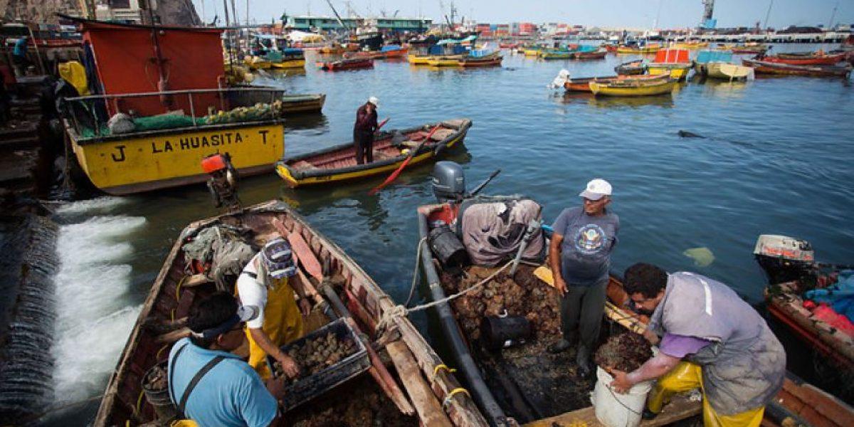 """Y ese mar que tranquilo te baña: La anulación de la """"Ley de Pesca"""" que nunca se concretó"""
