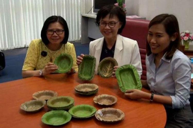 En Tailandia diseñan platos desechables de hojas de árboles