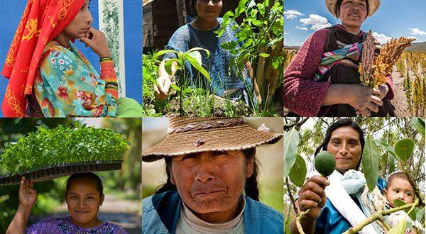 Mujeres indígenas de Suramérica se suman a campaña de la FAO para erradicar el hambre