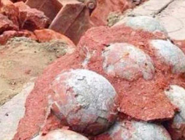 Huevos fosilizados de dinosaurios aparecieron en China