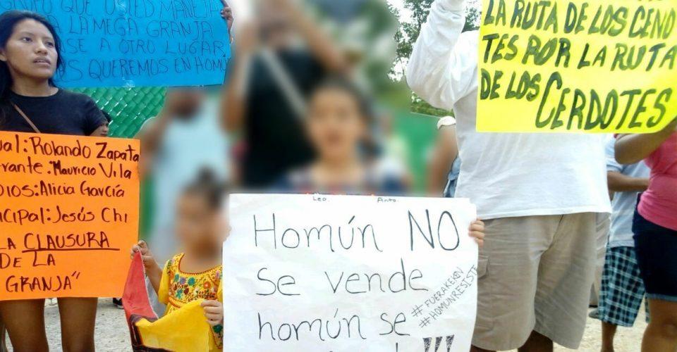 Niños mayas ganan la batalla a mega granja de cerdos en Yucatán