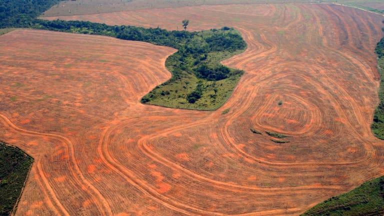 Indígenas aseguran que gobiernos han entregado la Amazonía al capital transnacional