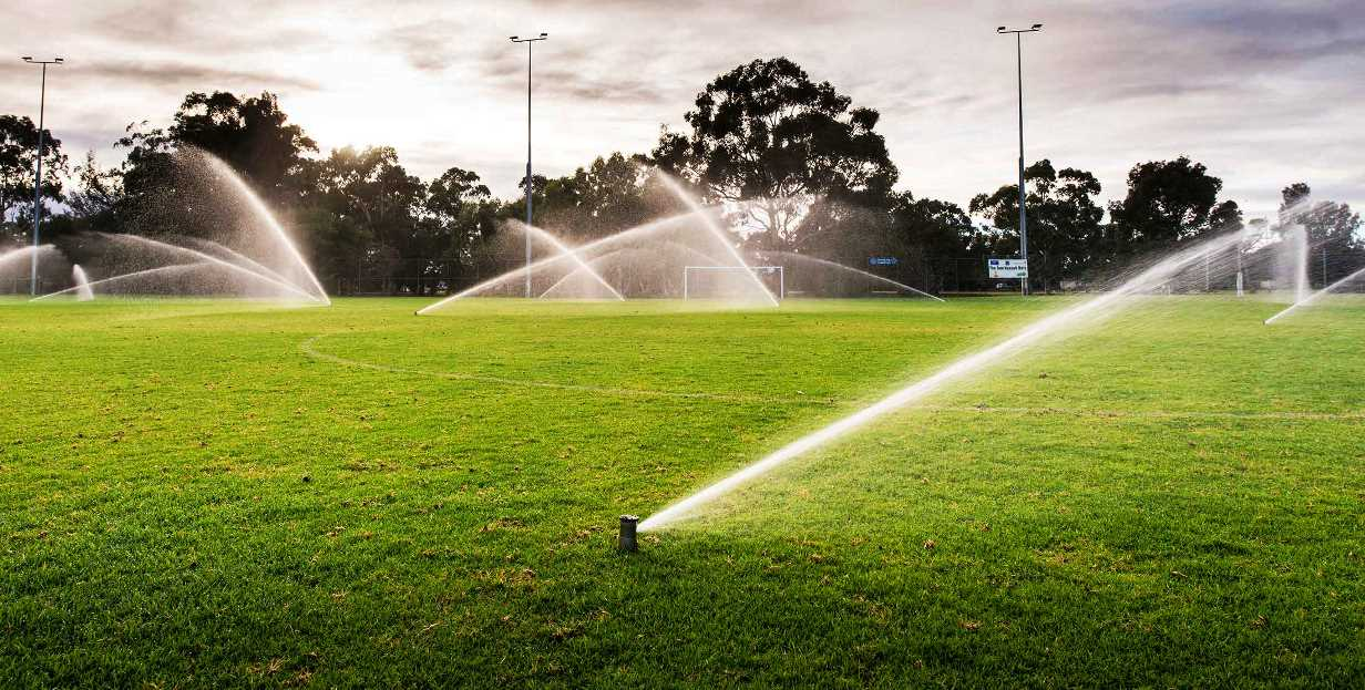 Si quieres ahorrar agua no siembres césped en tu jardín