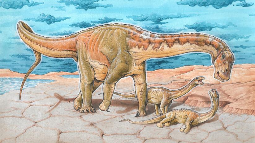 """Hallan nueva especie de fósiles de dinosaurios en la Patagonia y lo apodan """"Alfredito"""" en honor a cantautor uruguayo"""