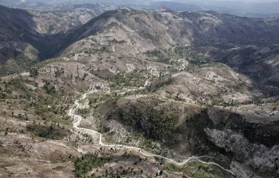 Haití: Un país que se está quedando sin bosques