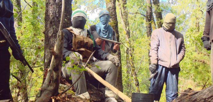 La CAM pide a los mapuches y al pueblo chileno que asuman el rol protagónico para la reconstrucción nacional