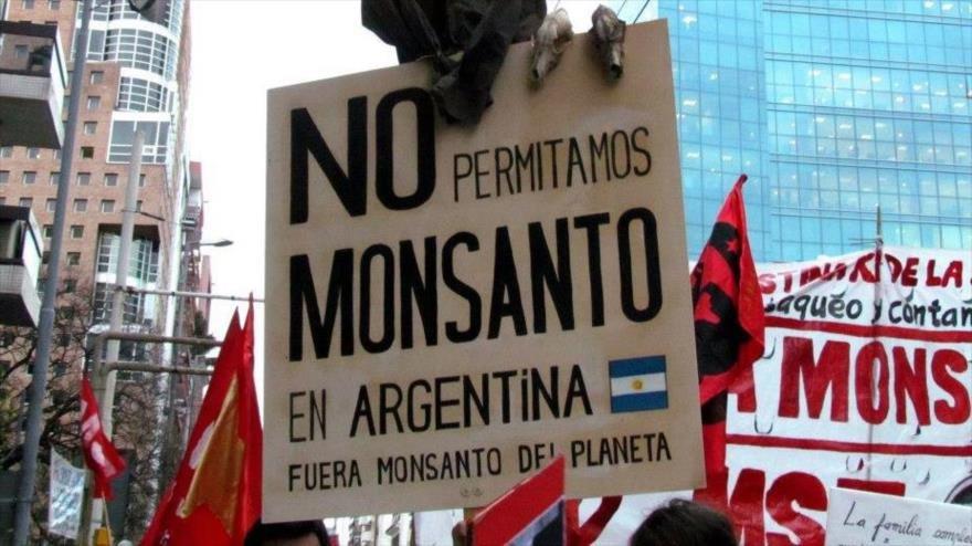 Argentina está a punto de perder su derecho libre y gratuito a reutilizar semillas para el agro