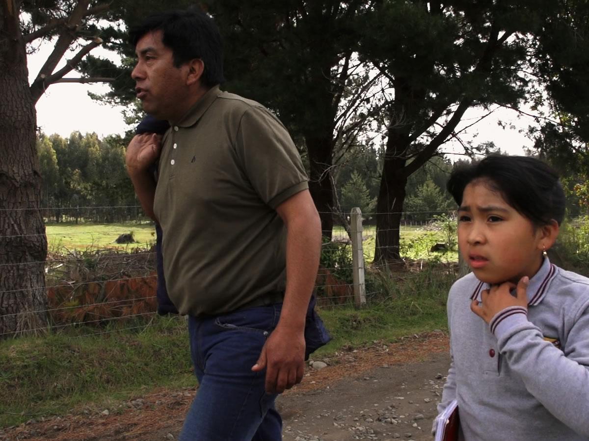 Programan nuevas exhibiciones de documental Txageltü en Valparaíso y la provincia de Aconcagua