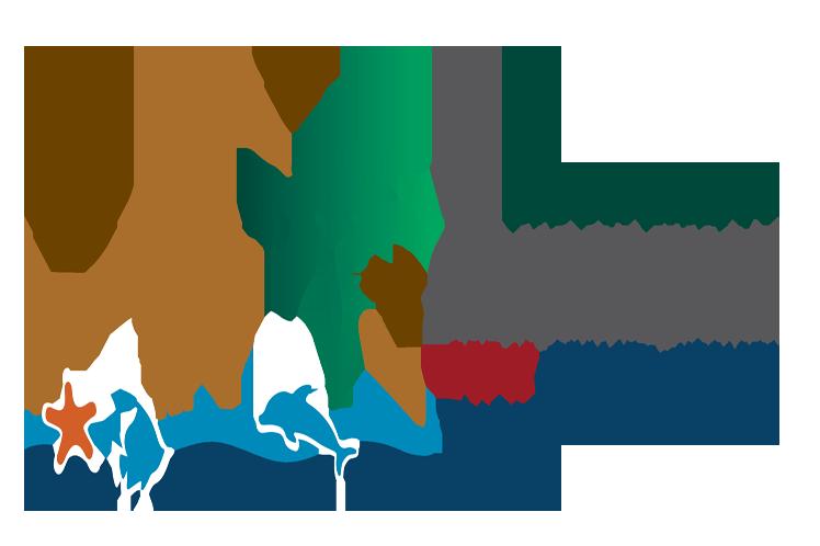 Inaugurada conferencia mundial de Naciones Unidas sobre Biodiversidad en Egipto