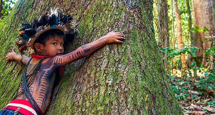Indígenas piden que gobiernos les paguen por proteger la Amazonía