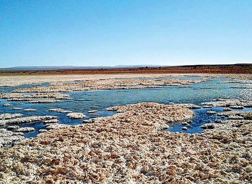 Rechazan plan ambiental de empresa norteamericana que pretende explotar 42.500 toneladas de litio anuales