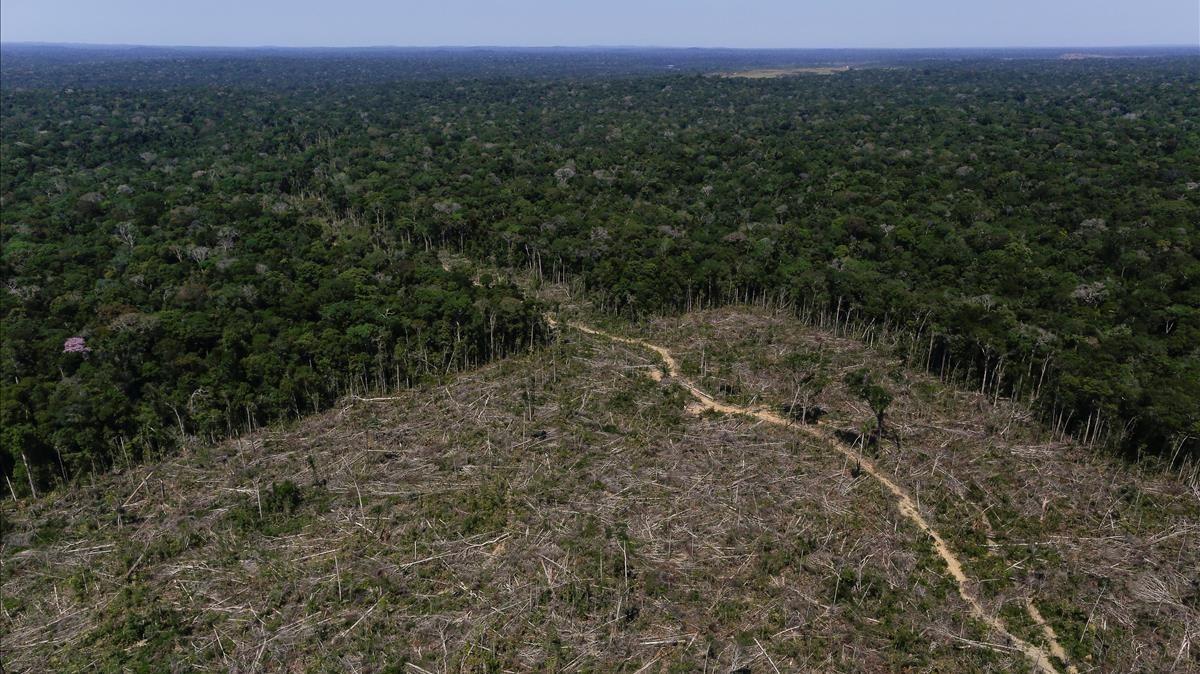 Indígenas denuncian a mineras ante la ONU por violar sus derechos en la Amazonía