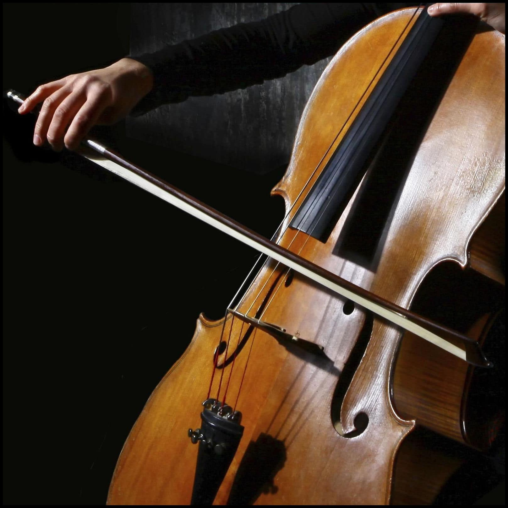 """""""Para que no estrangule a nadie en el avión"""" confiscan cuerdas del instrumento de un músico israelí"""