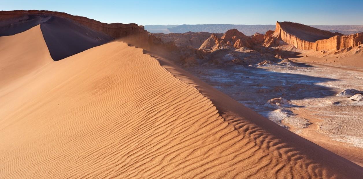 Primeras lluvias en 500 años en el Desierto de Atacama provocan devastación de especies microbianas