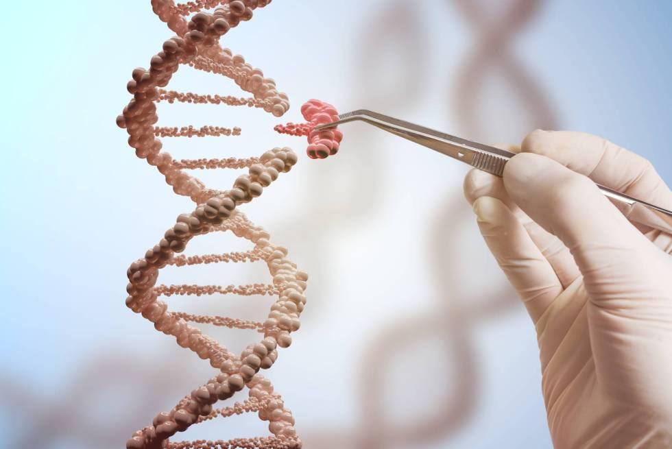 Científico que desarrolló la modificación genética se halla en la universidad de Cantón