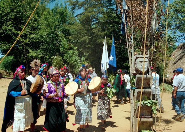 """Comunidades mapuche de Pucón denuncian destrucción de sitio ceremonial: """"Tenía impactos de perdigones"""""""