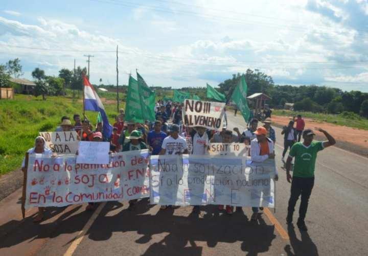 (Video) Campesinos se movilizan contra cultivos masivos de soja
