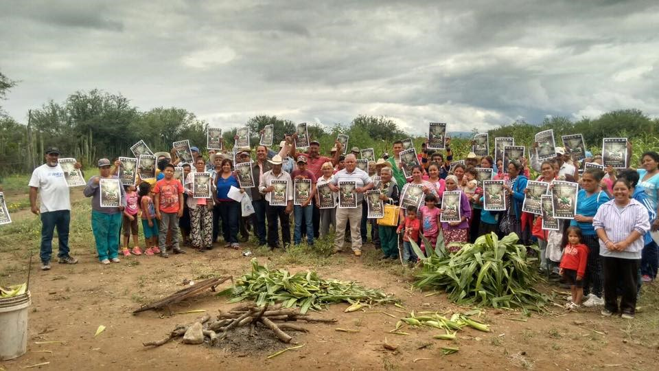 Hondureños rechazan entrega de tierras al capital privado