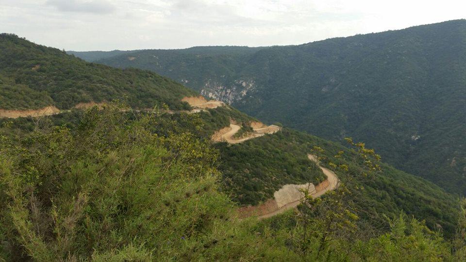 Ministra Cifuentes ordena diligencias para identificar restos óseos encontrados en Curacaví