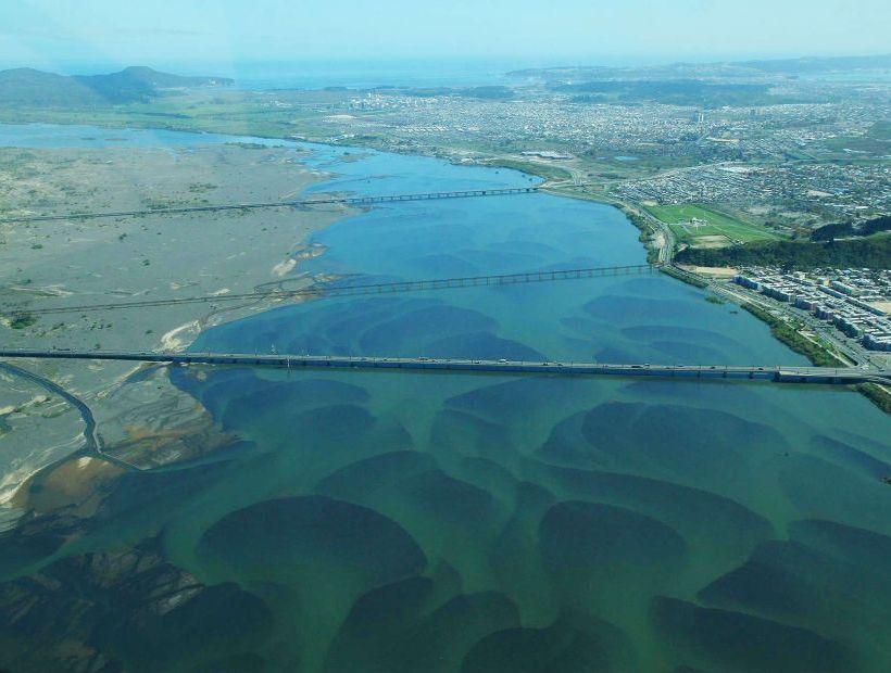 Comisión de Evaluación Ambiental aprueba proyecto de Puente Industrial en el Biobío