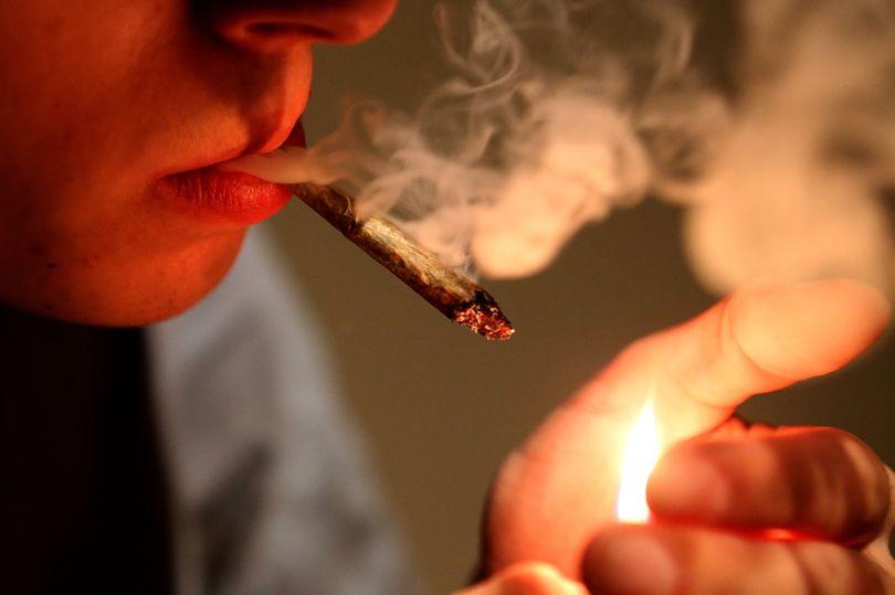 Consumir marihuana al menos una vez puede alterar el cerebro de un adolescente